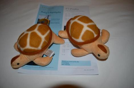 Conrad turtles.