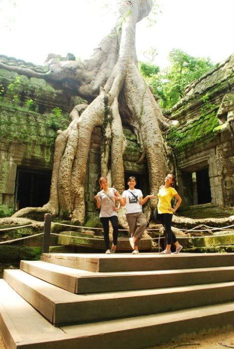 Checked out this famous Tomb Raider tree.
