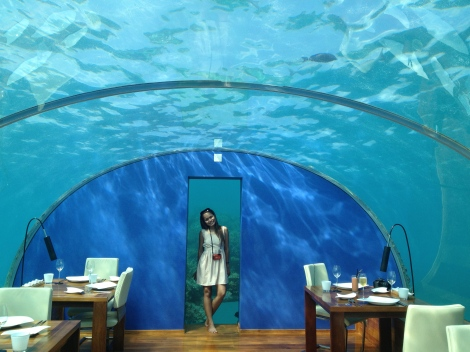 Rac looking cool in the Ithaa Underwater Restaurant in Conrad Rangali, Maldives.