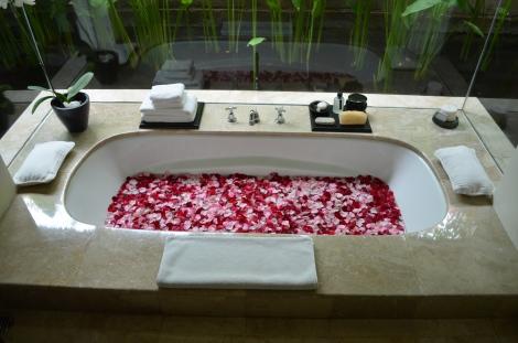 Honeymoon treatment!