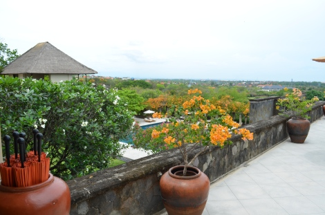 Rac loved the orange flowers all over the resort.