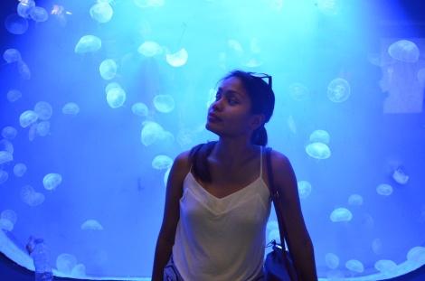 Genoa Aquarium, Italy.